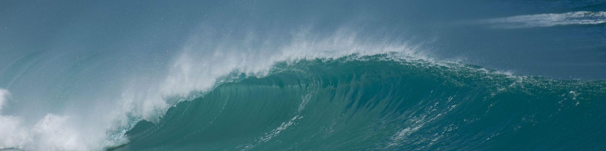 Surfside Services - Wave 3